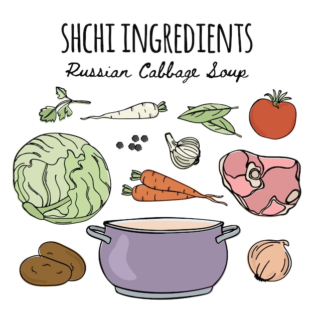 Recette de soupe pour la cuisine russe shchi Vecteur Premium