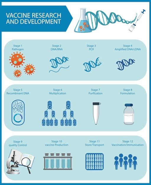 Recherche Et Développement De Vaccins Pour L'affiche Ou La Bannière Du Covid-19 Ou Du Coronavirus Vecteur gratuit