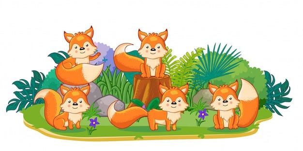 Les renards jouent ensemble dans le jardin Vecteur Premium