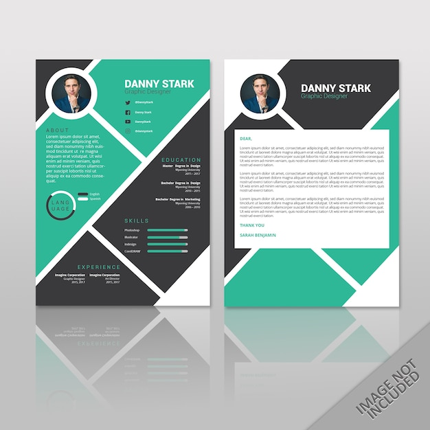 Reprendre Danny Stark Vecteur Premium
