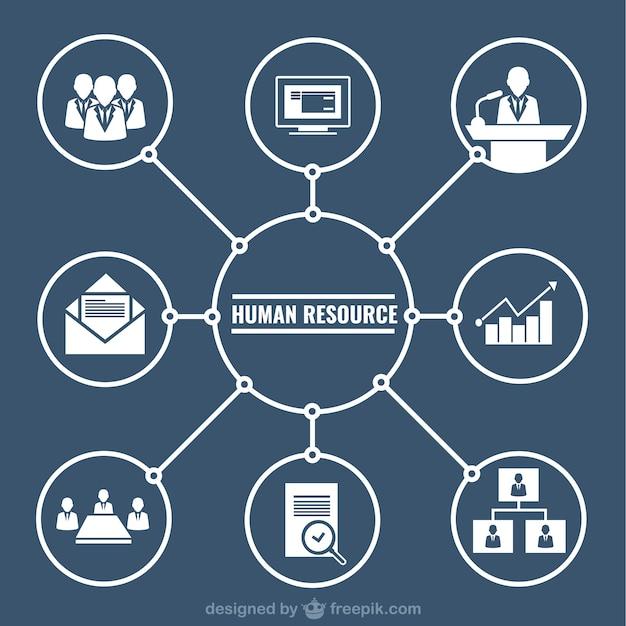 ressources humaines graphique