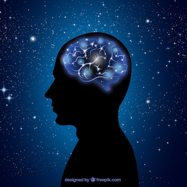 Résumé Cerveau Vecteur Premium