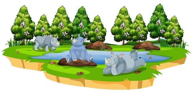 Rhinocéros sauvages dans la nature Vecteur gratuit