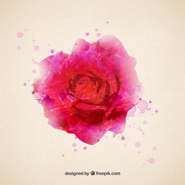 Rose Dans Le Style D Aquarelle Telecharger Des Vecteurs Gratuitement