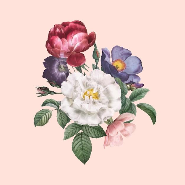 Roses en fleurs Vecteur gratuit