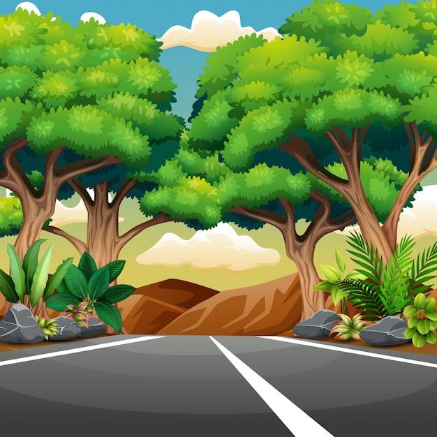 Route pavée droite avec paysage forestier Vecteur Premium