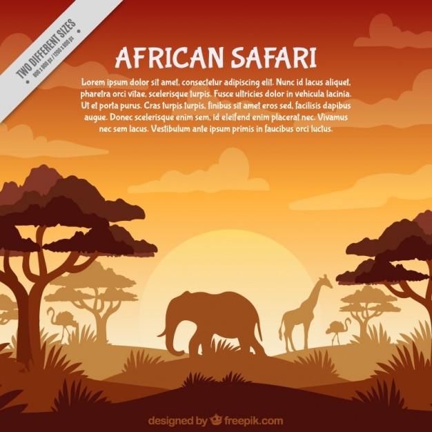 Safari Africain Dans Les Tons Orange Vecteur Premium