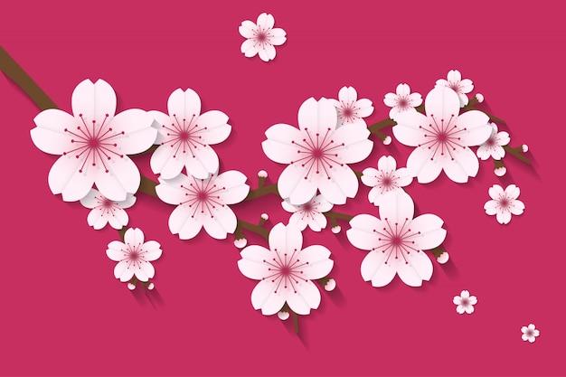 Sakura flower artisanat style vecteur de vecteur Vecteur Premium