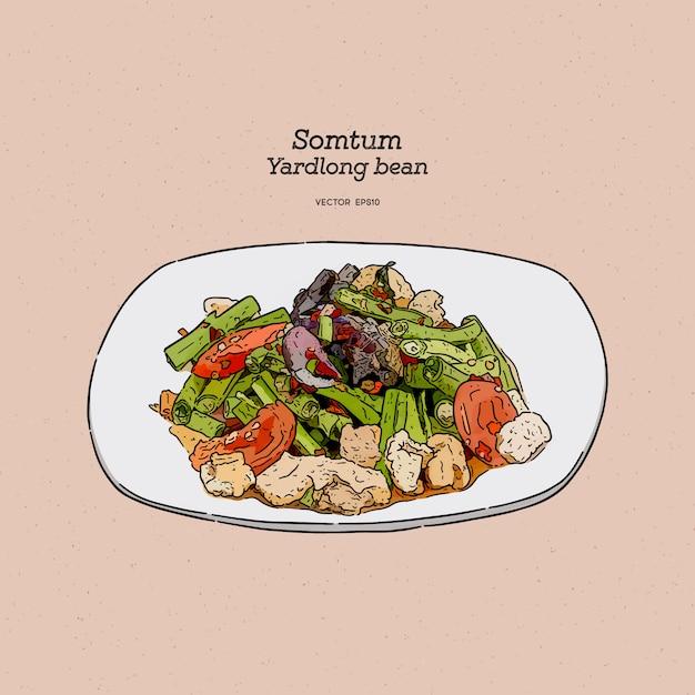 Salade épicée Aux Haricots Longs, Cuisine De Rue Thaïlandaise. Main Dessiner Esquisse. Vecteur Premium