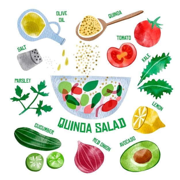Salade Quanda Saine Illustrée Vecteur gratuit