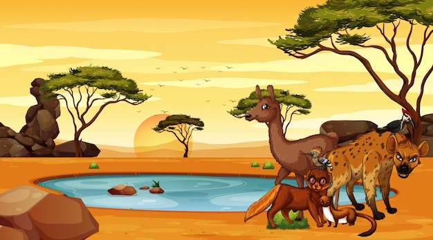Scène avec beaucoup d'animaux sur le terrain Vecteur gratuit
