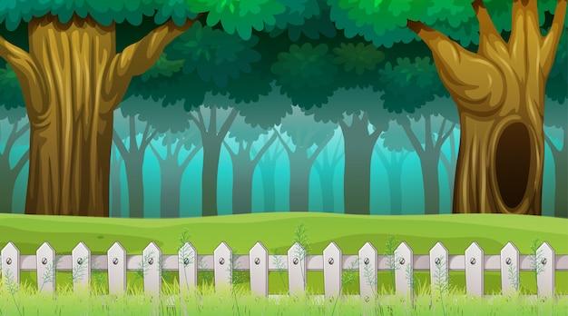 Scène des bois avec clôture Vecteur gratuit