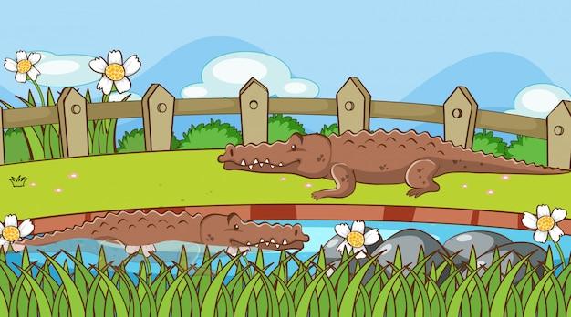 Scène avec des crocodiles dans le parc Vecteur gratuit