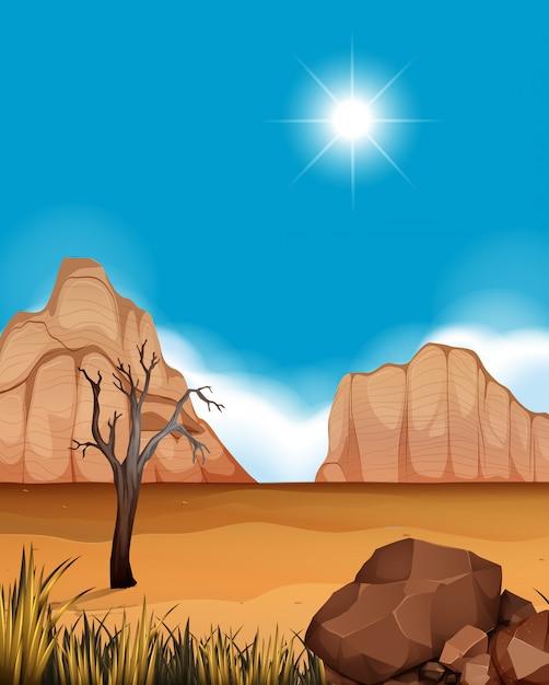 Scène de désert avec canyons et champ Vecteur Premium