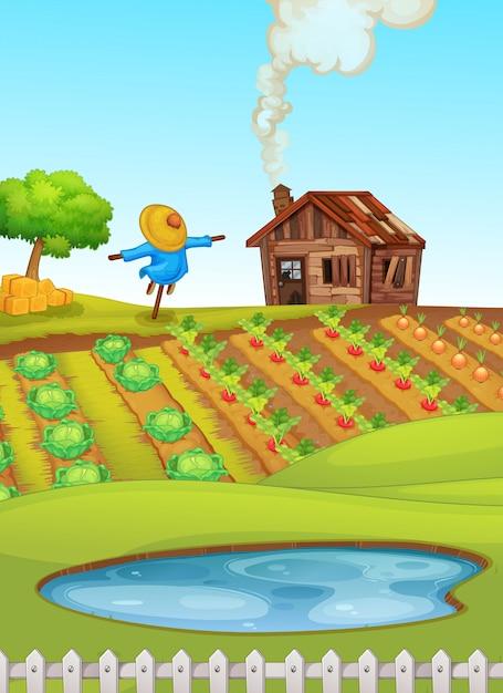 Scène de ferme avec étang au premier plan et illustration des cultures Vecteur gratuit