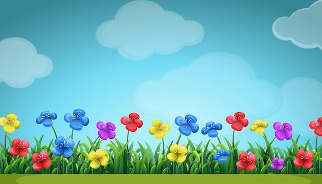 Scène Avec Des Fleurs Colorées Sur Le Terrain Vecteur gratuit