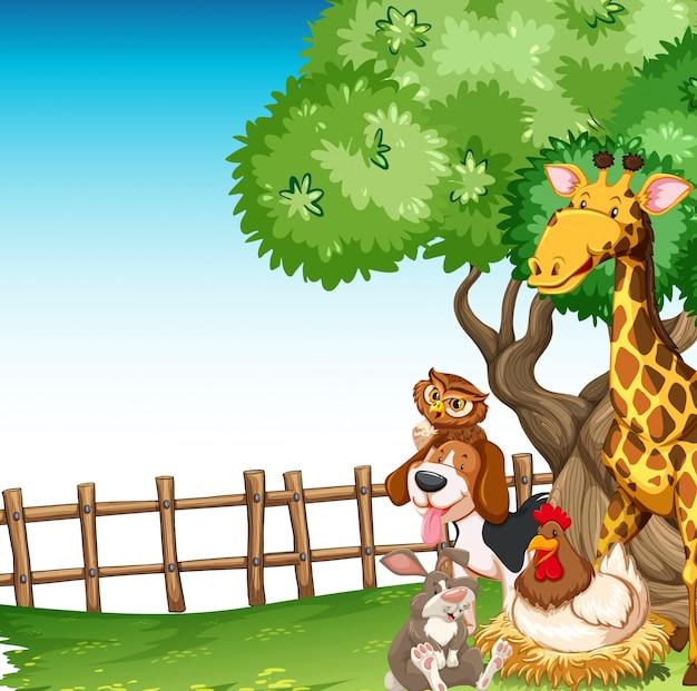 Scène de fond avec des animaux de la ferme dans le domaine Vecteur gratuit