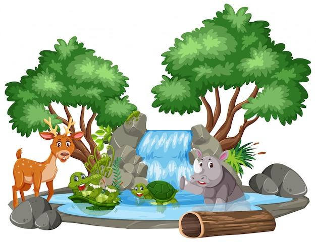 Scène de fond de cascade et d'animaux Vecteur Premium