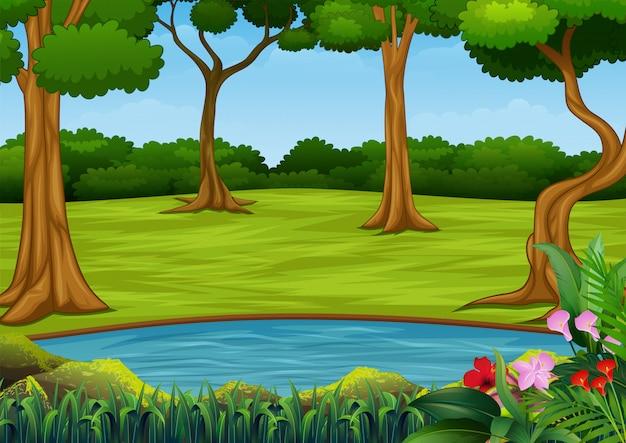 Scène de forêt avec beaucoup d'arbres et petit étang Vecteur Premium
