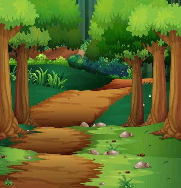 Scène de forêt avec un chemin de terre au milieu Vecteur gratuit