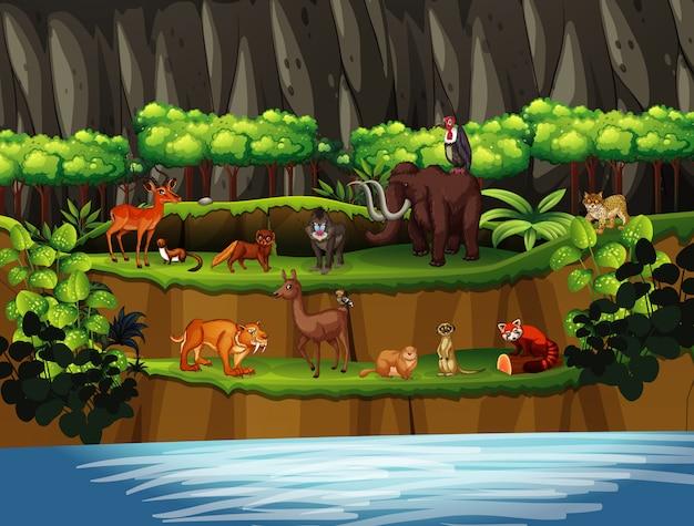 Scène Avec De Nombreux Animaux Au Bord De La Rivière Vecteur gratuit