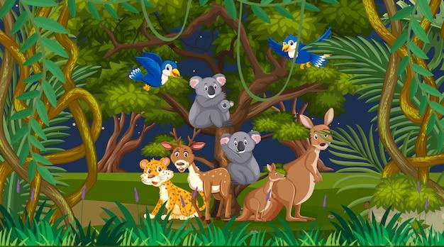 Scène Avec De Nombreux Animaux Sauvages Dans Le Parc Vecteur Premium