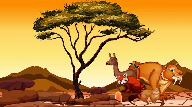 Scène Avec De Nombreux Animaux Sur Le Terrain Vecteur gratuit