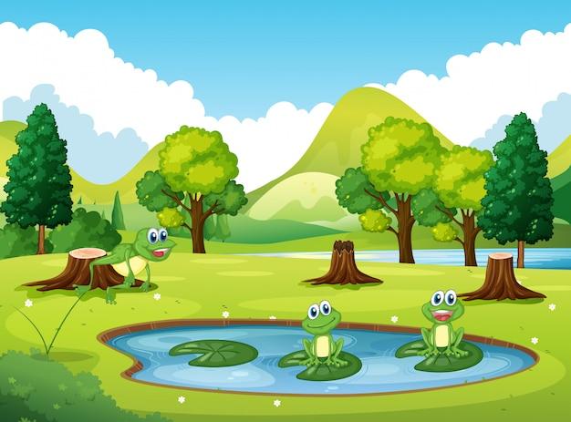 Scène de parc avec trois grenouilles dans l'étang Vecteur Premium