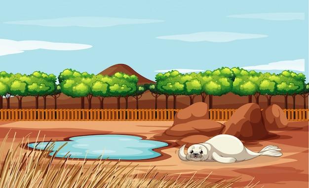 Scène Avec Phoque Au Zoo Vecteur gratuit