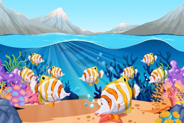 Scène avec poisson nageant sous la mer Vecteur gratuit