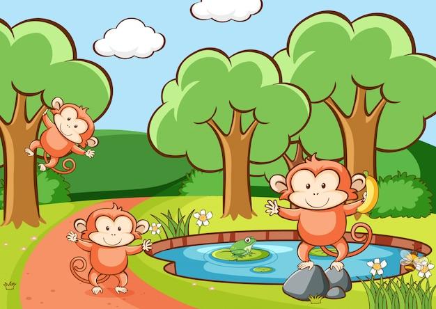 Scène avec des singes en forêt Vecteur gratuit