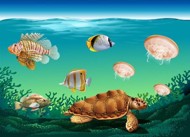 Scène sous-marine avec de nombreux animaux marins Vecteur gratuit