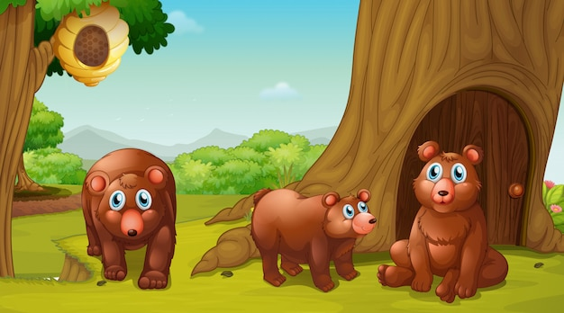 Scène Avec Trois Ours Dans Le Parc Vecteur gratuit