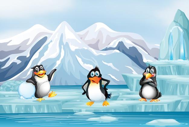 Scène Avec Trois Pingouins Sur Glace Vecteur gratuit