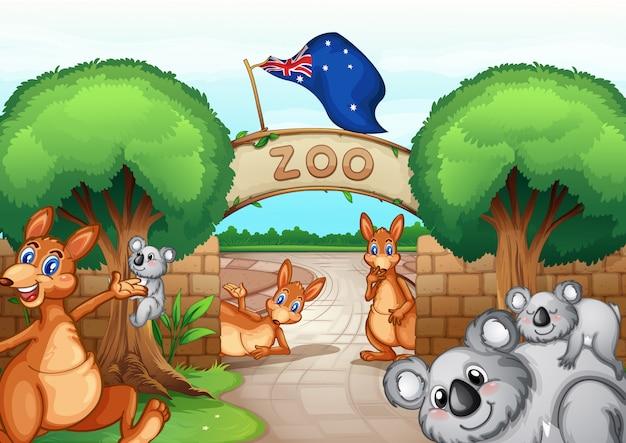 Scène de zoo Vecteur Premium
