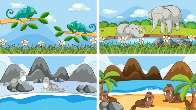 Scènes de fond d'animaux à l'état sauvage Vecteur gratuit