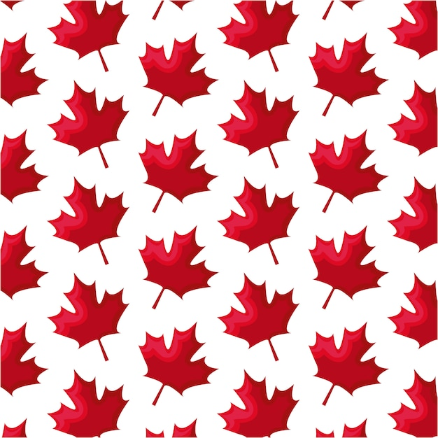 Seamless pattern of leafs maple canada Vecteur Premium