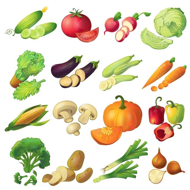 Seize Icônes De Légumes Mûrs De Dessin Animé Réaliste Isolés Mis Colorés Avec Des Tranches Vecteur gratuit