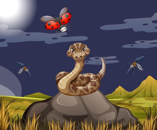 Serpent Avec Coccinelle Dans La Scène Forestière La Nuit Vecteur gratuit