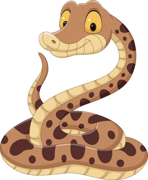Serpent De Dessin Animé Sur Blanc Vecteur Premium
