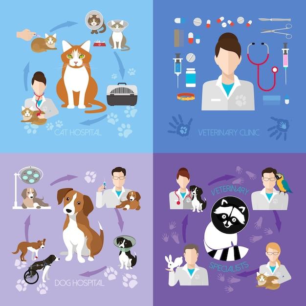 Service de clinique vétérinaire Vecteur Premium