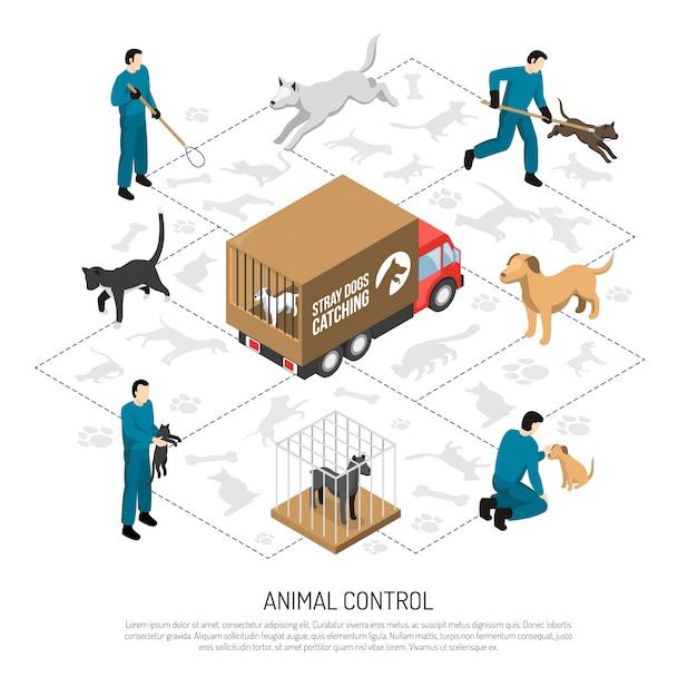Service de contrôle des animaux isométrique Vecteur gratuit