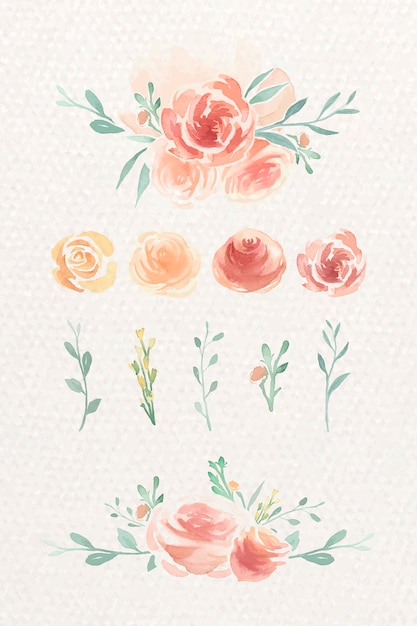 Set d'aquarelle rose Vecteur gratuit