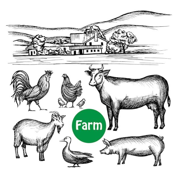 Set de ferme dessiné à la main Vecteur gratuit