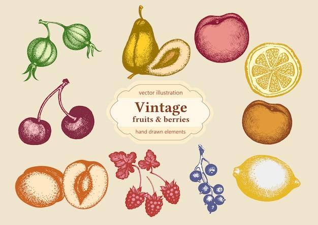 Set de fruits Vecteur Premium