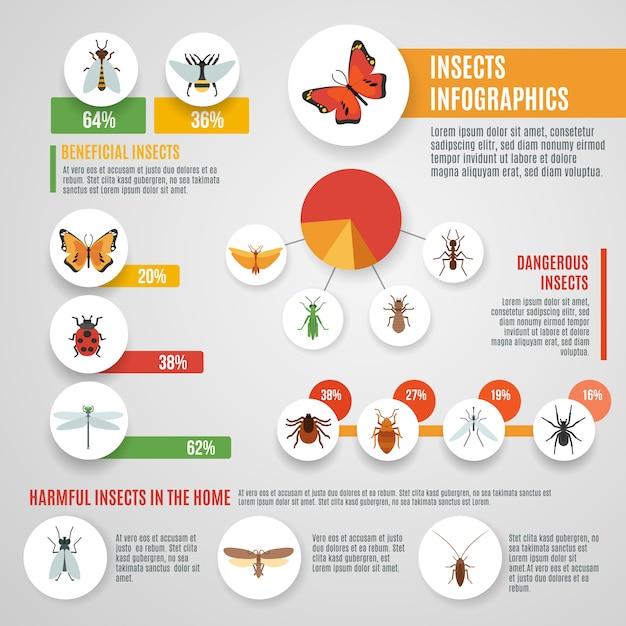 Set d'infographie insectes Vecteur gratuit