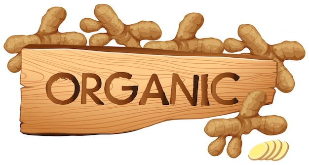 Signe bio aux gingembre frais Vecteur gratuit