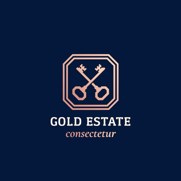 Signe Ou Logo Abstrait Immobilier Vecteur Premium