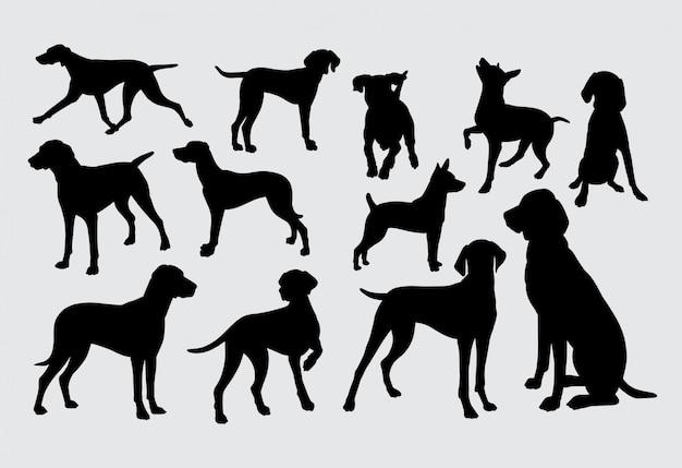 Silhouette de chiens Vecteur Premium