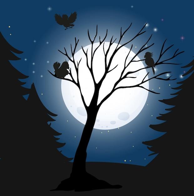 Silhouette nuit noire et oiseaux Vecteur gratuit